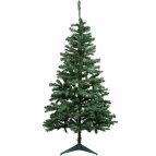 Douglas fir tree (1.8m/6ft)