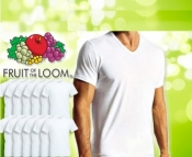 12 T-shirts WIT Fruit of the Loom